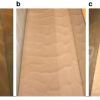Bedform characteristics: (a) 0%, (b) 0.125%, (c) 1%. Bedform characteristics with different proportions of Xanthan gum (EPS) - Malarkey et al. (2015), Nature Communications 6, 6257