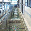 CIEM: Largest flume with wedge paddle type (deep and intermediate wave condition), 4 m water depth and waves up to Hmax=1.5 m.
