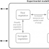 Biota: The range of possible approaches for representing biota over multiple timescales in experimental models.