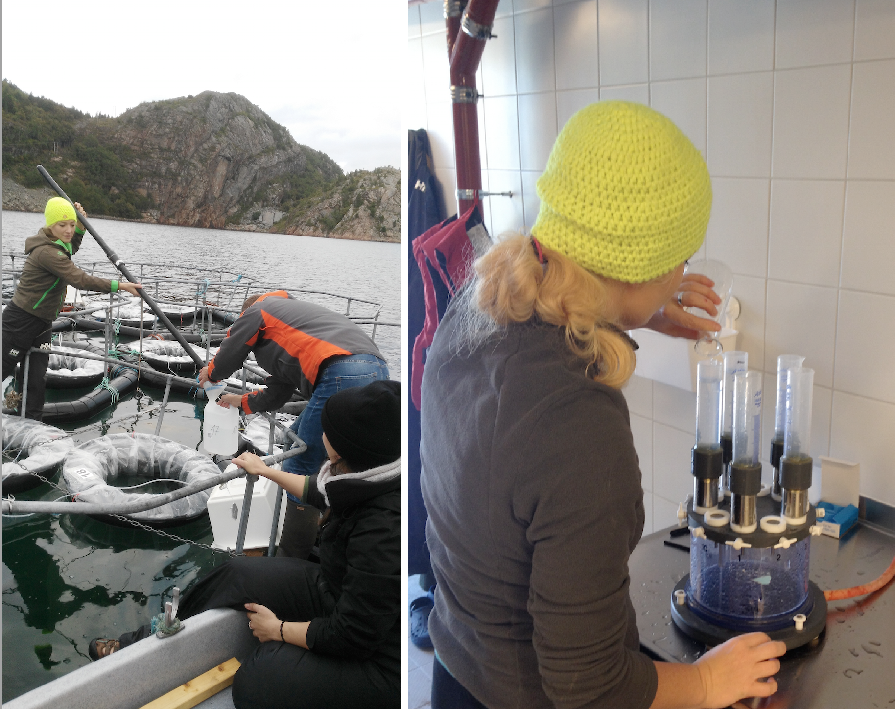 Pictures 5 : Tube sampler (left) and filtration units (right) used to collect and process samples to further study the dynamics of planktonic organisms (phytopankton, bacteria). © M. Stockenreiter, Luna Benitez Requena, Sabine Schultes and Patrick Fink